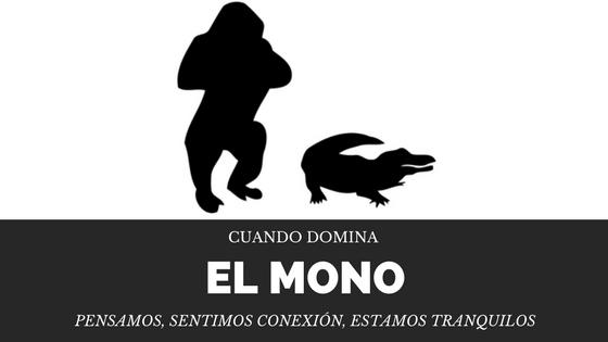 Cuando_Domina_el_Mono