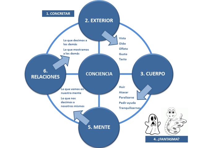 Educación_Familiar_Rueda_Conciencia