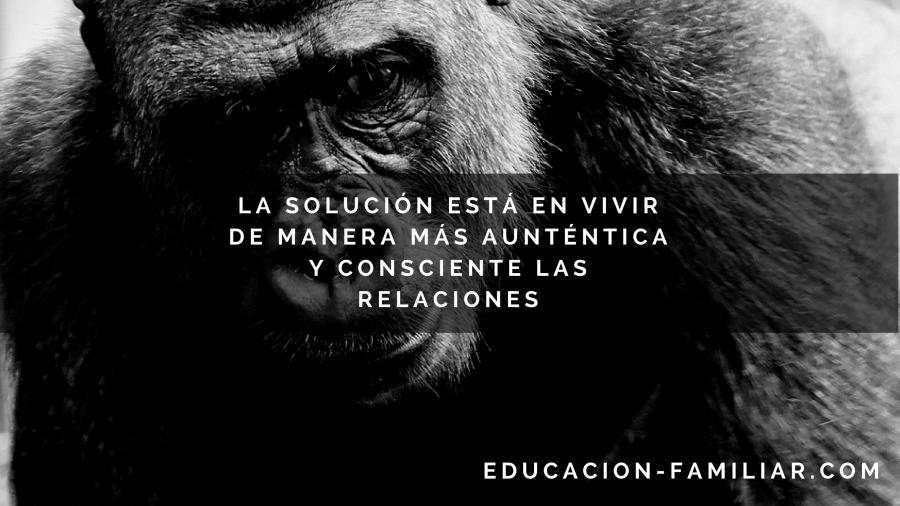 Mentalización paradigma educación familiar
