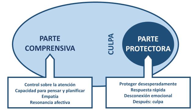 Comprensiva_Protectora